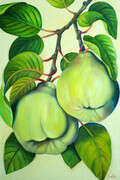 Quince - Botanical   24x36  Oil on Canvas, wired and ready to hang.